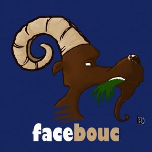 Face-bouc1